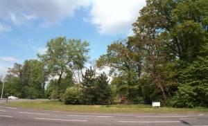 Diverse roundabout