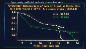 Egg mortality